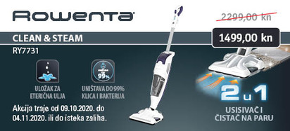 rowenta clean and steam ry7731